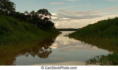 Amazon River, South America