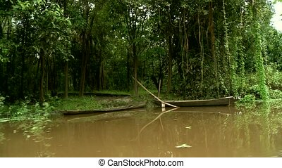Amazon River, Southamerica