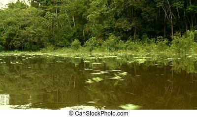 Amazon River, Southamerica - Shipping On Amazon River