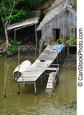 A small hut next to the Amazon River.