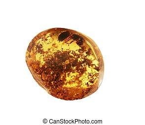 Amber - Ancient amber