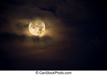 Amber moon - A dark night brings a bright, amber moon alive ...