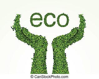 ambiental, cuidado, el, manos, de, el, pasto o césped