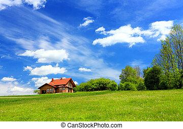 ambiente, montaña, ecológico, casa nueva