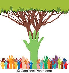 ambiente, risparmiare, albero