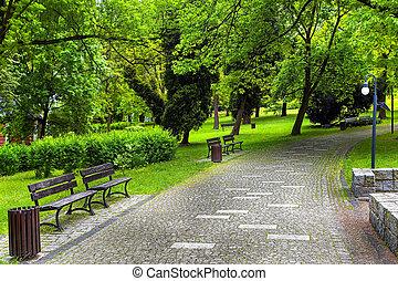 ambiente, verde, natural