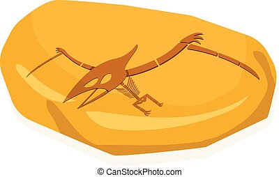 ambra, vettore, pterosaurs, fossile, bianco, osso