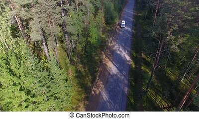 Ambulance car rides along the forest road. Aerial view