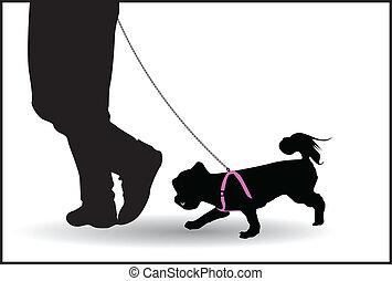 ambulante, correa, hombre, el suyo, perro