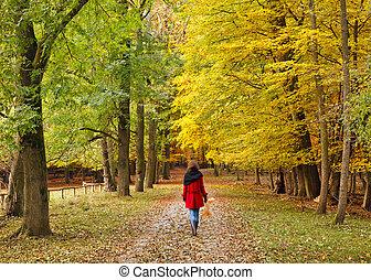 ambulante, en, otoño, parque