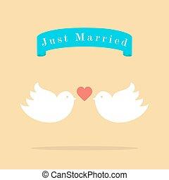 ame pássaros, casório