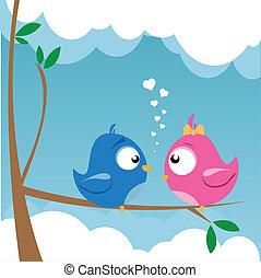 ame pássaros