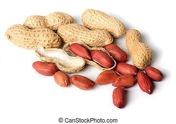 amendoins, branca, isolado