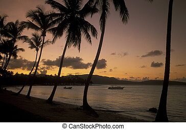 a Beach at the Village of Las Terrenas on Samanaon in The Dominican Republic in the Caribbean Sea in Latin America.