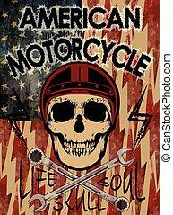 America Flag and skull