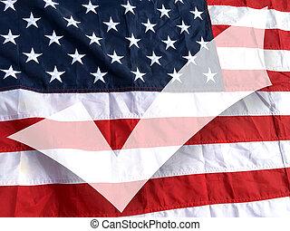 America voting