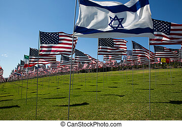 American and other Flags