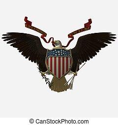 Accipitridae, the american bald eagle, united states seal.