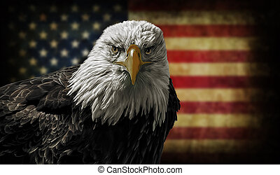 American Bald Eagle on Grunge Flag - Oil painting of a...