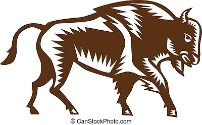 Illustration of an american bison buffalo bull viewed from the side set on isolated white background done in retro woodcut style.