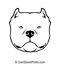 American bully head dog isolated on white background.
