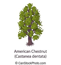 American chestnut icon, flat style
