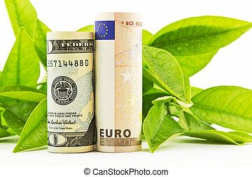 American dollar and European euro i