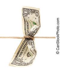 American dollar tied in twine