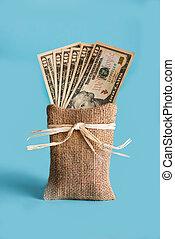 American Dollars Cash Money on the bag