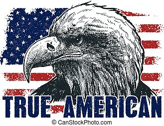 American eagle against USA flag. Vector illustration