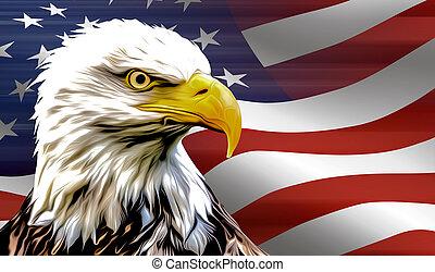 american eagle and flag usa