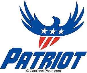 American Eagle Flying USA Flag Patriot Retro