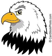 American eagles head - isolated illustration.