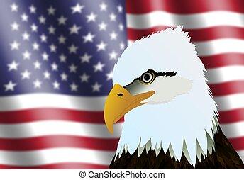 American Flag and Eagle Head