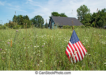 American flag and wildflowers