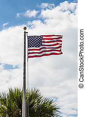 American Flag Blowing Over Palm Tree