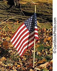 American flag cemetery