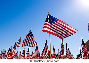 Unitied States Flags displayed as tribute of military veterans in the United States of America
