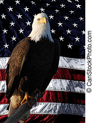American Flag Eagle perched painted flag