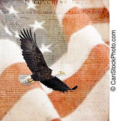 American Flag, flying bald Eagle