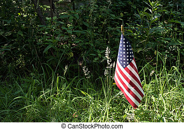 American flag in sunshine
