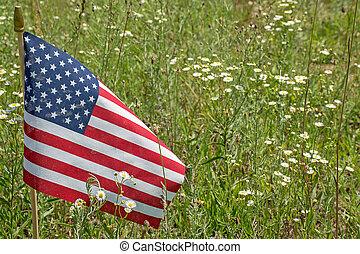 American flag in wildflower meadow