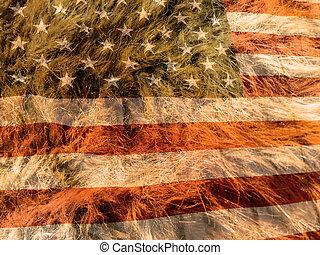 American flag on the fur