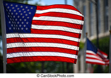 American Flag Stands Proud