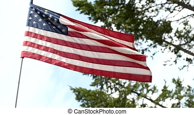 American flag waving with wwods on the background