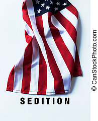 American flag with sedition word
