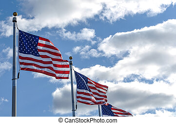 American Flags in the Wind