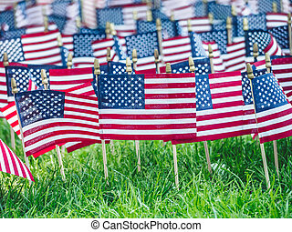 American flags on the grass