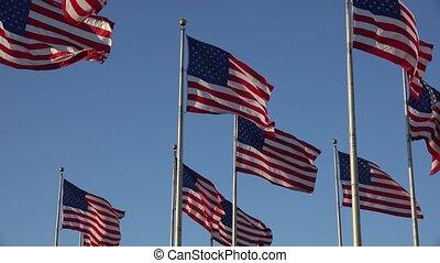 American Flags Waving in Wind