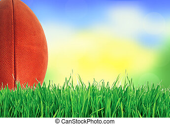 American football (rugby ball) on green grass over nature, close up